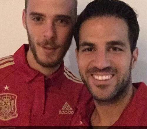 david-de-gea-and-cesc-fabregas